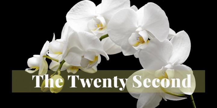 The Twenty-Second